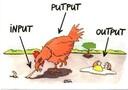 Input Output Putput